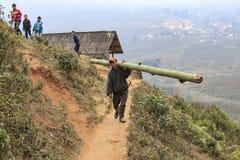 在Sapa供以人员生活,在北越,运载走在Sapa山的一条狭窄的道路的竹利益  免版税图库摄影