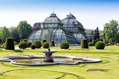 在Schonbrunn宫殿附近的植物园在维也纳 免版税库存照片
