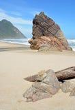 在Scotts海滩的岩石在Heaphy轨道的开始 免版税图库摄影