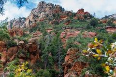 在Sedona亚利桑那美国自然奇迹的奇迹  免版税库存图片