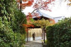 在Seiryuden日本人寺庙的一条绿色植物路 图库摄影