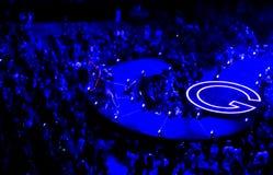 在Selena戈麦斯音乐会Torotno的心脏 免版税库存图片