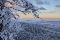 在Semenic山罗马尼亚的冬天不可思议的场面 免版税库存照片