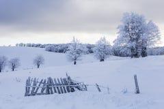 在Semenic山罗马尼亚的冬天不可思议的场面 免版税库存图片