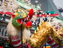 在Senso籍寺庙的金黄龙舞蹈 图库摄影