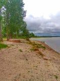 在Shatsky湖的被放弃的湖岸在乌克兰 库存图片
