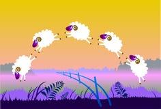 在sheeps的范围上涨 免版税库存图片