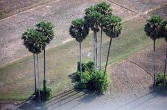 在Siemreap市顶部的看法在柬埔寨在早晨 免版税库存照片