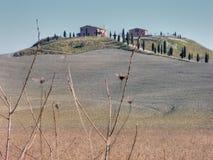 在siena托斯卡纳附近的乡下意大利 图库摄影