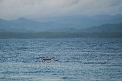 在Siladen绿松石热带天堂海岛上的偏僻的boart 免版税图库摄影