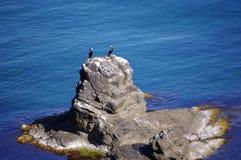 在Sinemorets,保加利亚之下的通配海岸 免版税图库摄影