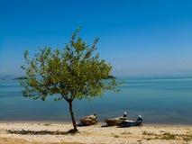 在Skadar湖的小船 免版税库存图片