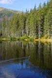 在Smreczynski湖的反射Koscieliska谷的, Tatras山在波兰 免版税图库摄影
