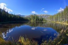 在Smreczynski湖的反射Koscieliska谷的, Tatras山在波兰 免版税库存图片