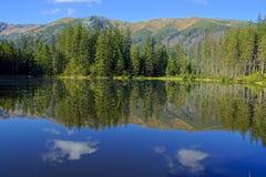 在Smreczynski湖的反射Koscieliska谷的, Tatras山在波兰 免版税库存照片