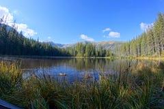 在Smreczynski湖的反射Koscieliska谷的, Tatras山在波兰 库存图片