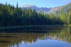 在Smreczynski湖的反射Koscieliska谷的, Tatras山在波兰 图库摄影
