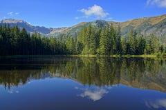 在Smreczynski湖的反射Koscieliska谷的, Tatras山在波兰 库存照片