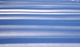 在snowland的森林阴影 免版税库存照片