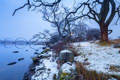 在Solvesborg附近的波罗的海海岸在冬天 库存照片