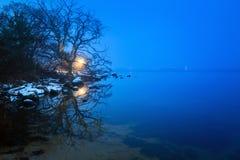 在Solvesborg附近的波罗的海海岸在冬天 免版税库存图片