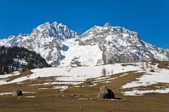 在Sonamarg,查谟和克什米尔,印度的Thajiwas冰川 免版税库存图片