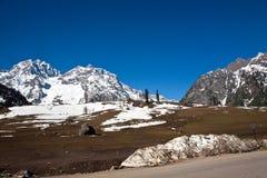 在Sonamarg,查谟和克什米尔,印度的Thajiwas冰川 免版税库存照片