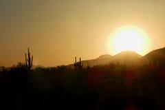 在Sonoran沙漠的日落:Tonopah,亚利桑那 库存图片
