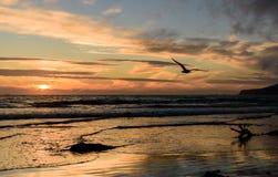 在Sooes海滩的夏天日落 库存图片