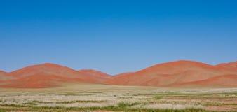 在Sossusvlei纳米比亚的橙色沙丘 免版税库存照片