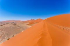 在sossusvlei纳米比亚,从一个沙丘45的顶端看法的沙丘45在sossusvlei纳米比亚,从沙丘的顶端看法 免版税库存照片