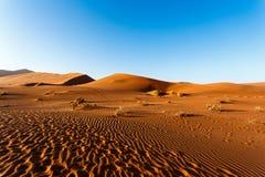在Sossusvlei,纳米比亚的沙丘 免版税库存照片