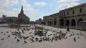在Souq Waqif的鸽子 股票录像