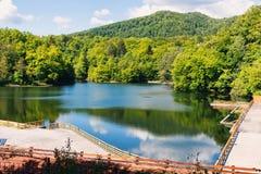 在sovata湖的木松弛区域 免版税库存图片