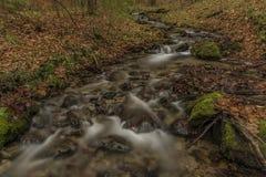 在Spania Dolina村庄附近的Bansky小河 库存照片