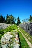 在Spanjola上堡垒墙壁  库存图片