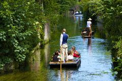 在Stour河,坎特伯雷,英国的划船 免版税库存照片