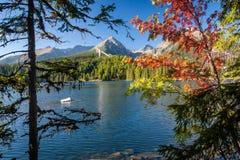 在Strbske塔恩省,高Tatras山,斯洛伐克的秋天 免版税图库摄影