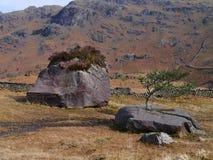 在Stythwaite附近的有趣的石头跨步,湖区 库存照片