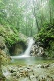 在Sungai Sendat, Ulu薯类,马来西亚的瀑布 免版税库存图片