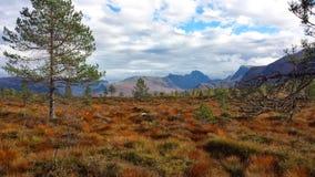 在sunnmøre的秋天 图库摄影