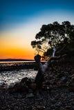 在sunsett的树 库存图片
