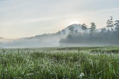 在Suoi近Tia Ho Tuyen Lam湖,大叻市的阳光城市,越南 图库摄影