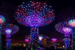 在Supertree树丛的轻和声音展示滨海湾公园的 图库摄影