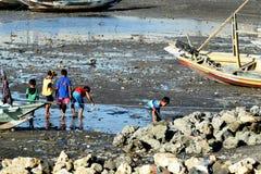 在Suramadu附近的儿童的寻找的蛤蜊 库存图片