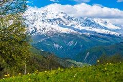 在Svaneti,乔治亚山的春天  免版税库存照片
