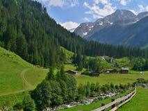 在Swemmalm的奥地利阿尔卑斯外型 库存图片