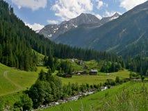 在Swemmalm的奥地利阿尔卑斯外型 免版税图库摄影