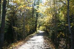 在Tønsber附近的秋天西福尔郡,西福尔郡 挪威 库存图片