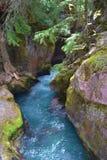 在T之间的冰川国家公园水色流动的水 免版税库存图片